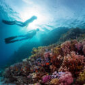 DIVING SAFETY TIPS